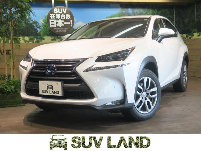 LEXUSNX NX300H I PACKAGE